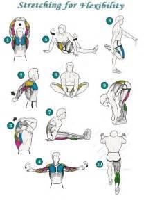 Standing Desk Lower Back Pain Flexibility Stretches On Pinterest Back Flexibility