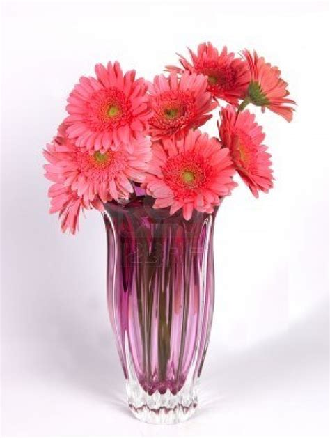 Vase With Flower by Meryem Uzerli Flower Vases With Flowers