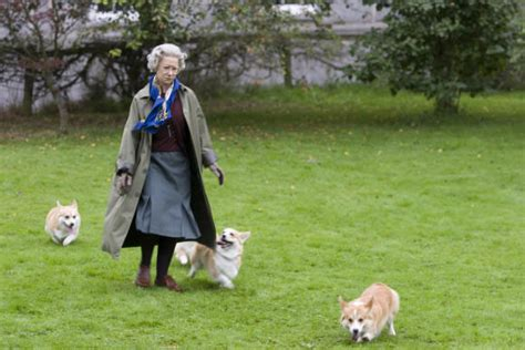 how many corgis does the queen have queen elizabeth dogs corgi