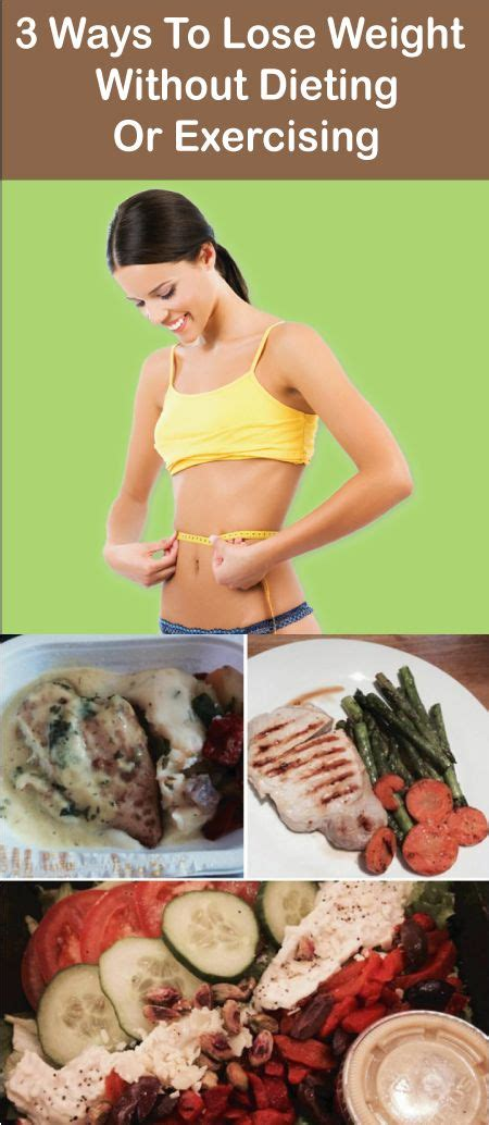 Buku Dont Sweat Guide To Weight Loss food plans weight loss don t enough time for exercise well i some secret tips for