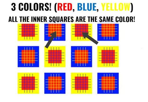 how many colors can you see optical illusions that tests the connection between your
