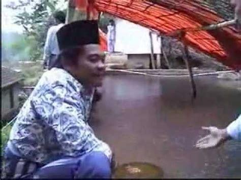 Bibit Lele Probolinggo budidaya lele meningkat dengan produk nasa magelang doovi