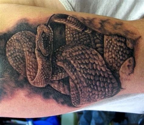 rattlesnake tattoos 3d snakes on biceps and triceps tattoos photo gallery
