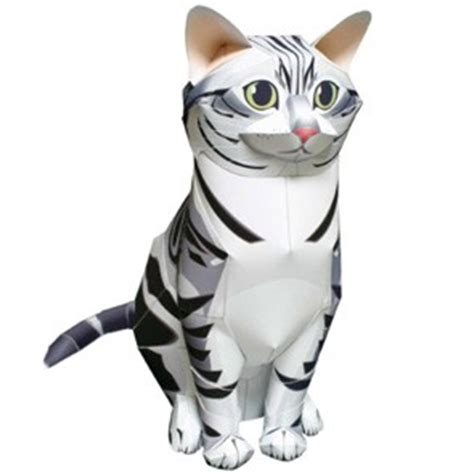 Raket Java actividades manuales de gato de papel americano pelo corto 3d es hellokids