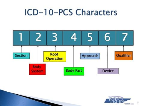 icd 10 pcs sections ppt introducing icd 10 pcs root operation group 7