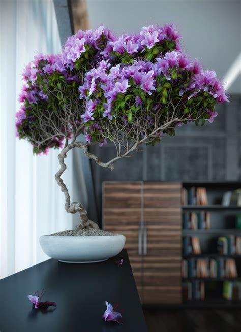 bonsai  interior settings
