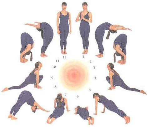 surya namaskar after c section learn surya namaskar steps with pictures