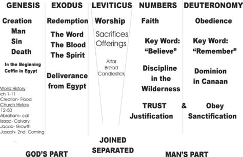 visual outline charts of the new testament books pentateuch notes elohim bible school