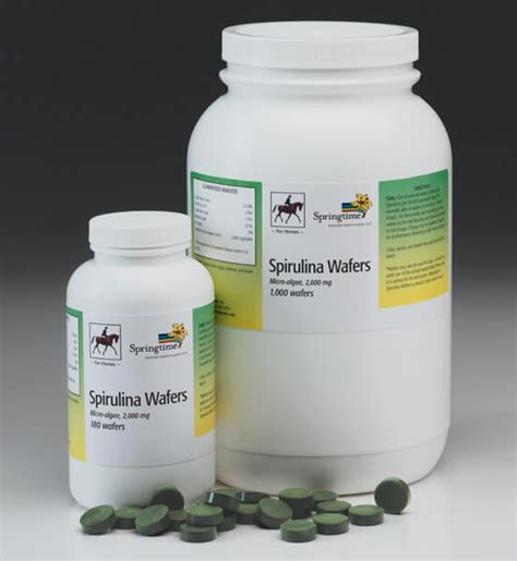 spirulina for dogs springtime inc all supplements for dogs horses and