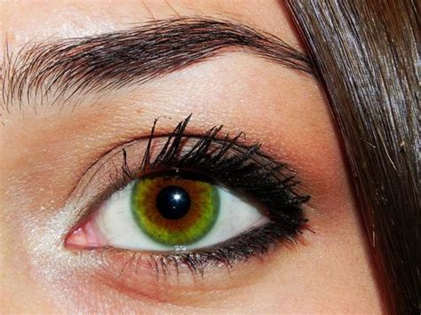 coolest eye colors 122 best images about amazing eye color on