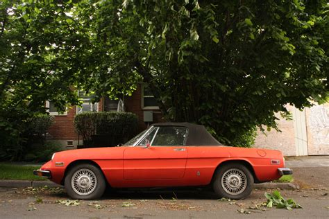 1973 Alfa Romeo by Parked Cars 1973 Alfa Romeo Spider