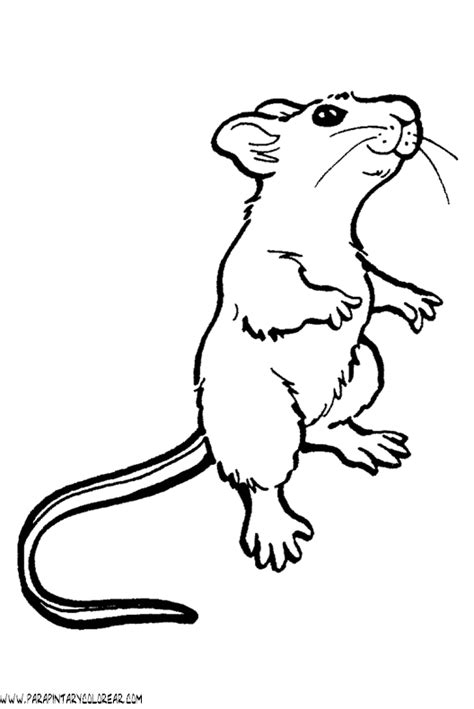 coloring page ralph s mouse 180 dibujos del raton imagui