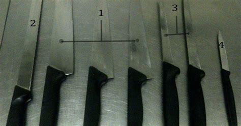 Pisau Tertajam ilmu kuliner ada banyak jenis pisau di dunia kuliner