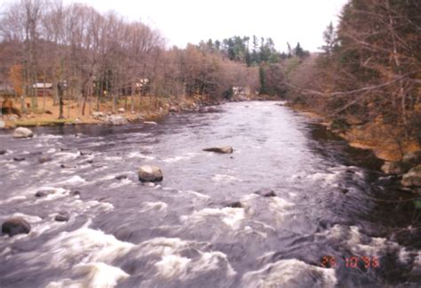 Black River Near Boonville Black Pearl Watertown Ny