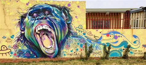 graffiti wallpaper johannesburg meet tim jentsch cabin crew and street art hunter ruby