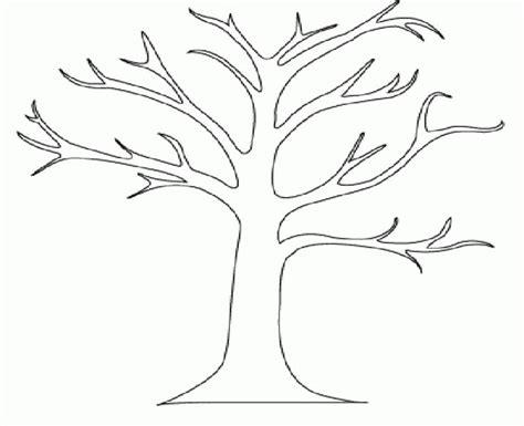 printable tree  leaves coloring  kids tree