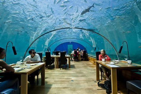 ithaa undersea restaurant ithaa undersea restaurant at conrad maldives rangali islan