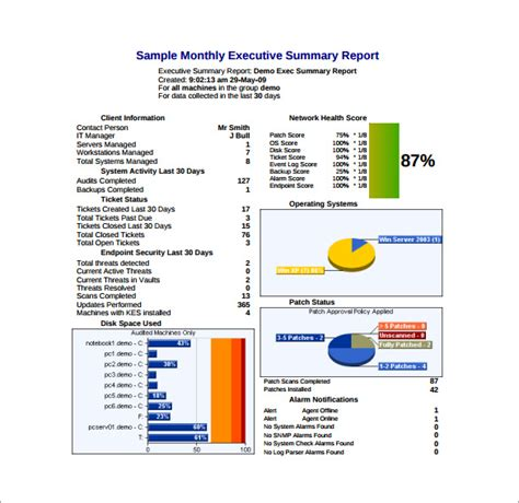 Monthly Executive Report Template