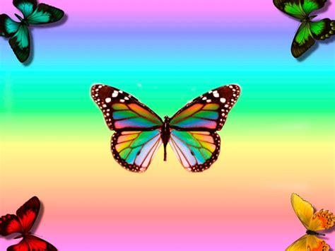 imagenes asombrosas bonitas image gallery imagenes de mariposas coloridas