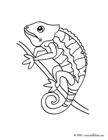 Chameleon Coloring Pages Printable Simple Chameleon Coloring Coloring Pages by Chameleon Coloring Pages Printable