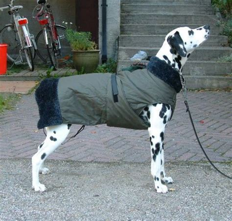 pattern for dog winter coat dog warm winter coat tutorial and pattern nopan