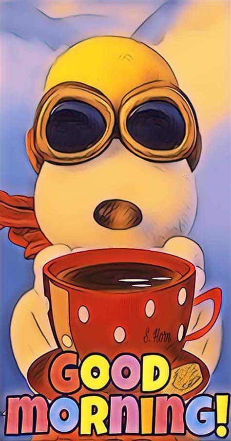 imagenes chuscas de good morning best 25 good morning ideas on pinterest good morning