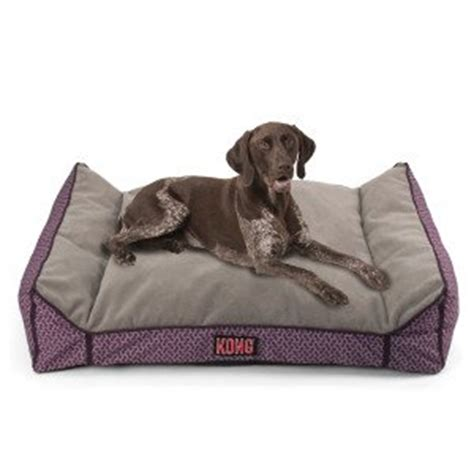 kong bed amazon com kong lounger dog bed purple pet supplies