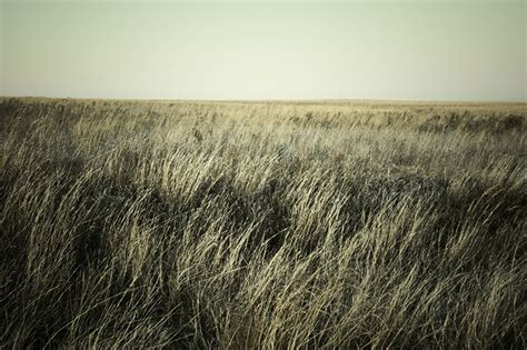 free photos free stock photography pack no 1 prairie
