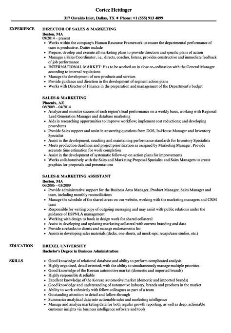 international sales cv format international sales resume sample