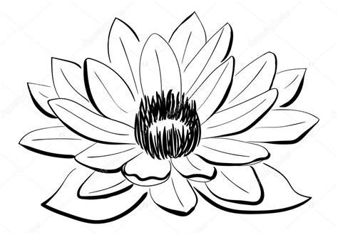 lotus tattoo zwart wit vector black and white lotus flower stock vector