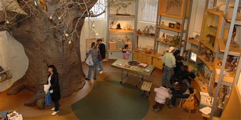 discovery room discovery room