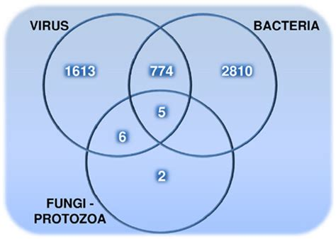 venn diagram of bacteria and viruses bacteria vs virus venn diagram quotes