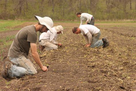 farmer s organic farmer finds profitable niche in locally grown