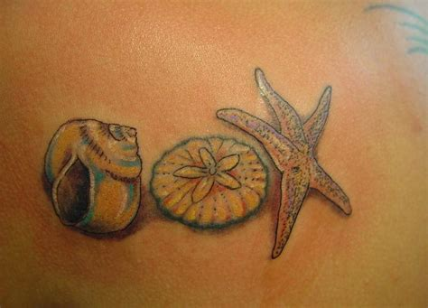 sea shell tattoo 301 moved permanently