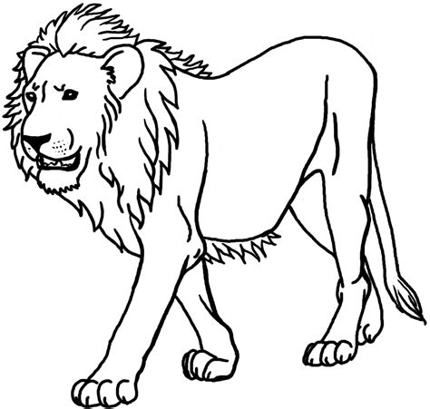 printable lion images 12 printable lion coloring pages print color craft