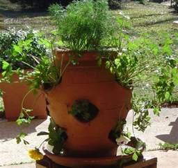 container herb gardening herb container garden
