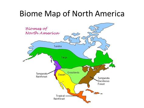 america map biome ecosystems humans and the environment ppt