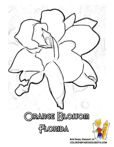 states flower coloring sheets alabama georgia free