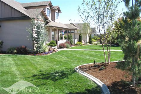 lawn ground care maintenance blue ribbon landscaping