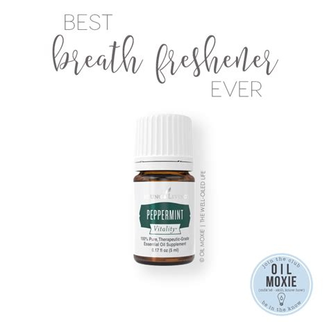 breath freshener best breath freshener essential recipe the well using