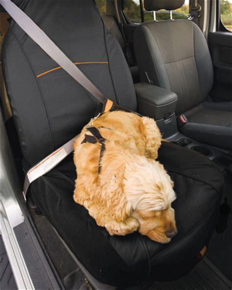 kurgo car seat covers kurgo co pilot seat cover care 4 dogs on the go