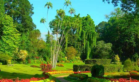 Royal Botanical Gardens Peradeniya Botanical Gardens