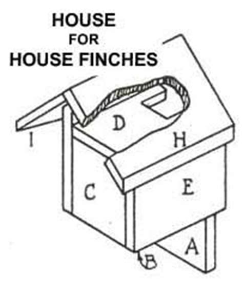 finch house plans finch bird house plans diywoodplans