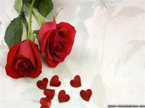 colorful roses wallpaper in romantic roses romantic flowers crazy widescreen red rose wallpaper of