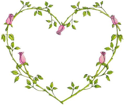 heart vine tattoo designs vine tattoos vines