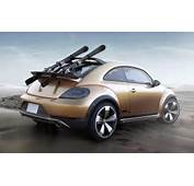 This Is The Picture Of 2016 VW Beetle Dune Rear Angle  If You Want To