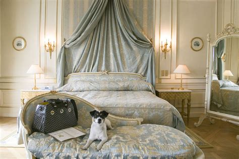 dog bedroom from paris with love le meurice hotel sherri style