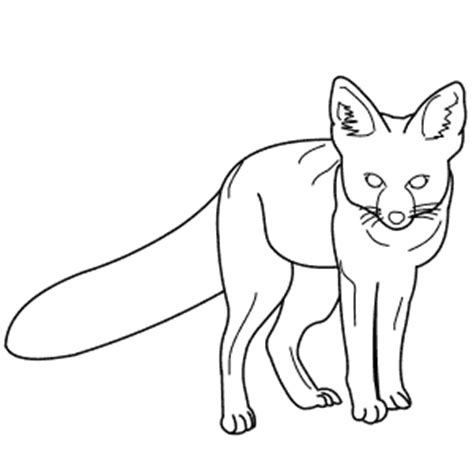 kit fox coloring page fox kit colouring pages