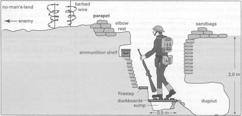 cross section of the world cross section ww1 trench warfare