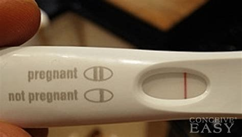 false negative pregnancy tests conceiveeasy